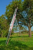 Obstbaumleiter 2-tlg.