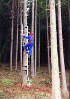 Mobile Einholm-Leiter